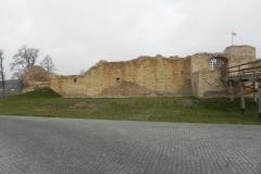 2013-11-17 Inowłódz - Ruiny zamku (9)
