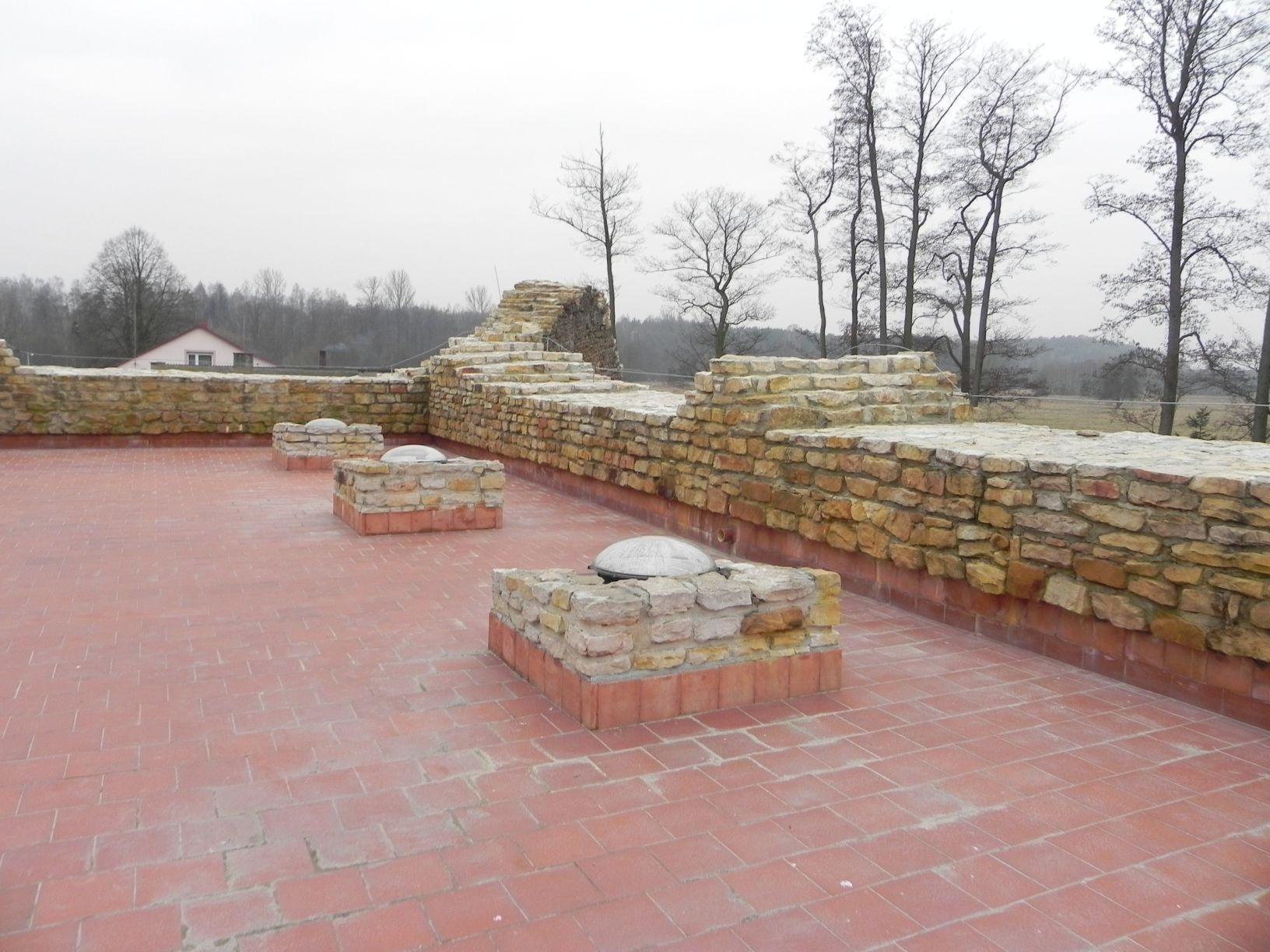 2014-01-05 Inowłódz - Ruiny zamku (13)