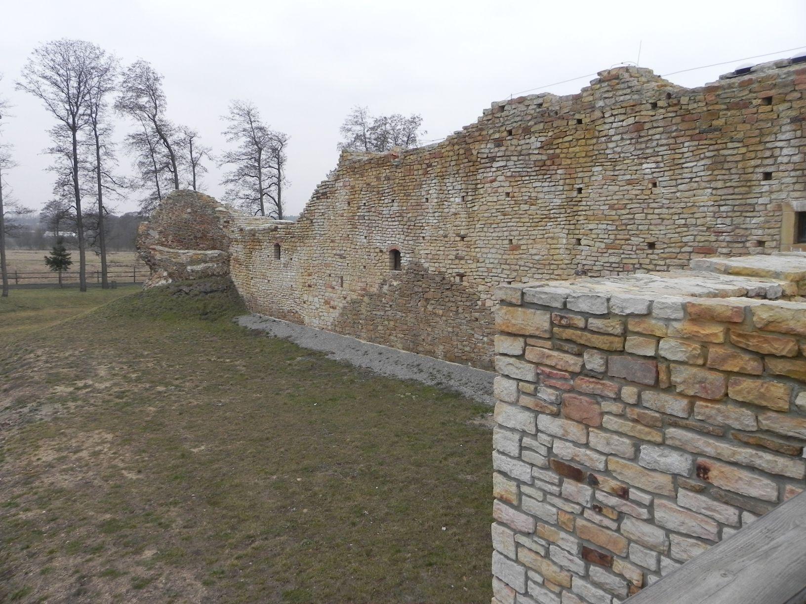 2014-01-05 Inowłódz - Ruiny zamku (15)