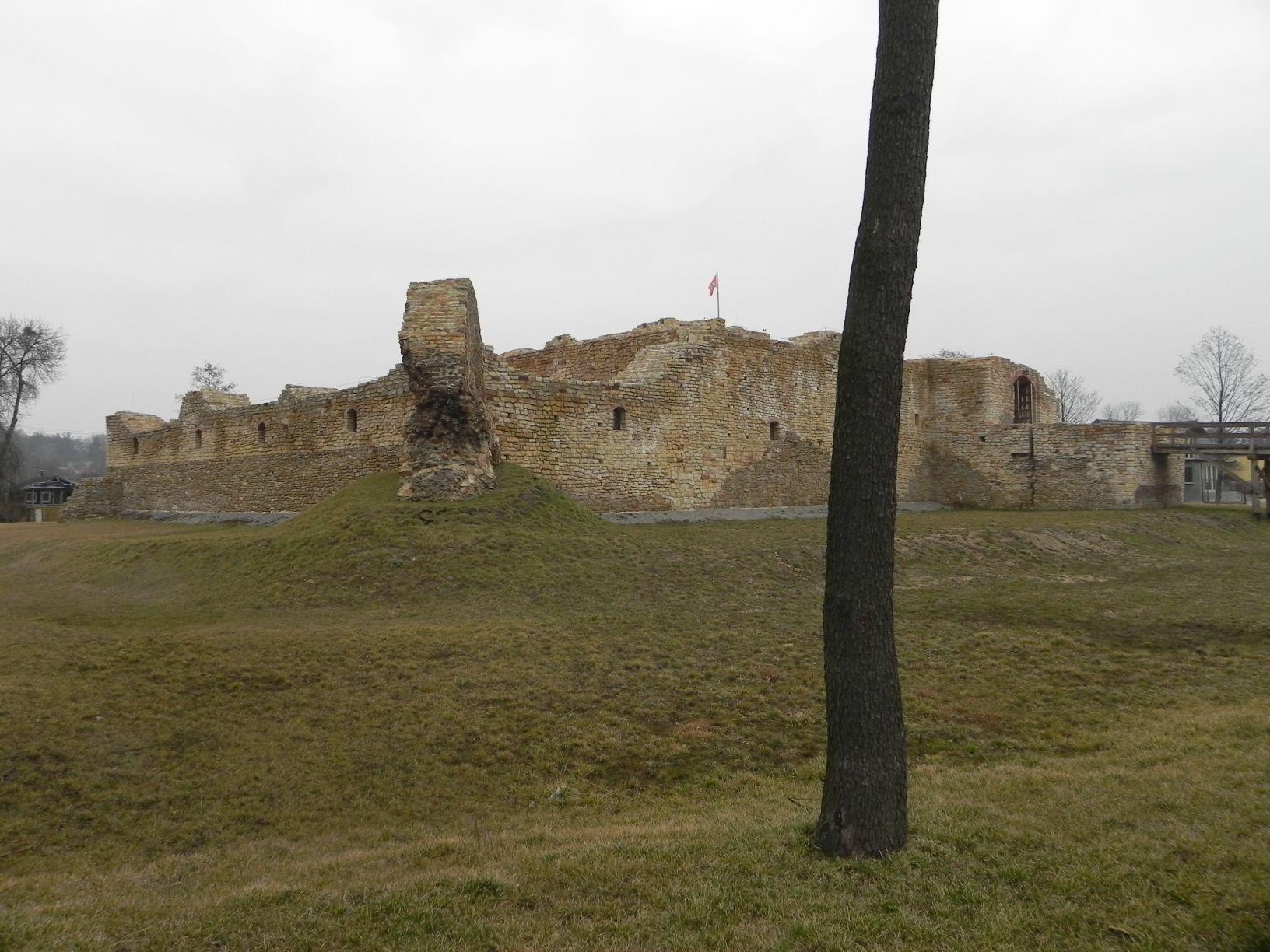 2014-01-05 Inowłódz - Ruiny zamku (17)