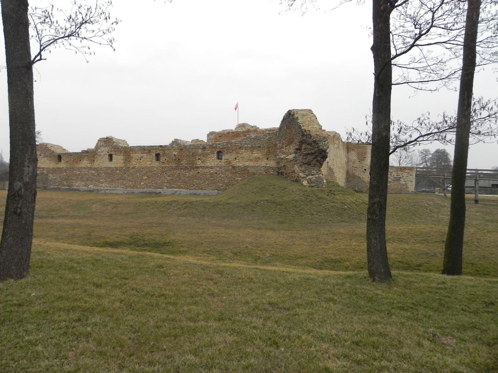 2014-01-05 Inowłódz - Ruiny zamku (18)