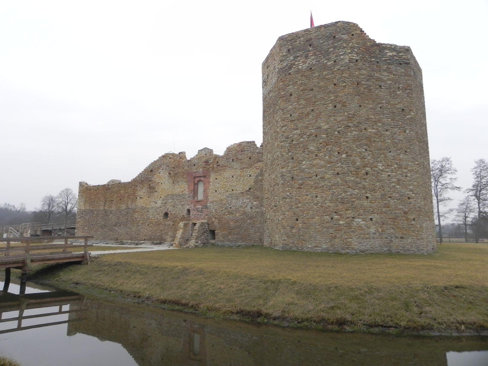 2014-01-05 Inowłódz - Ruiny zamku (2)