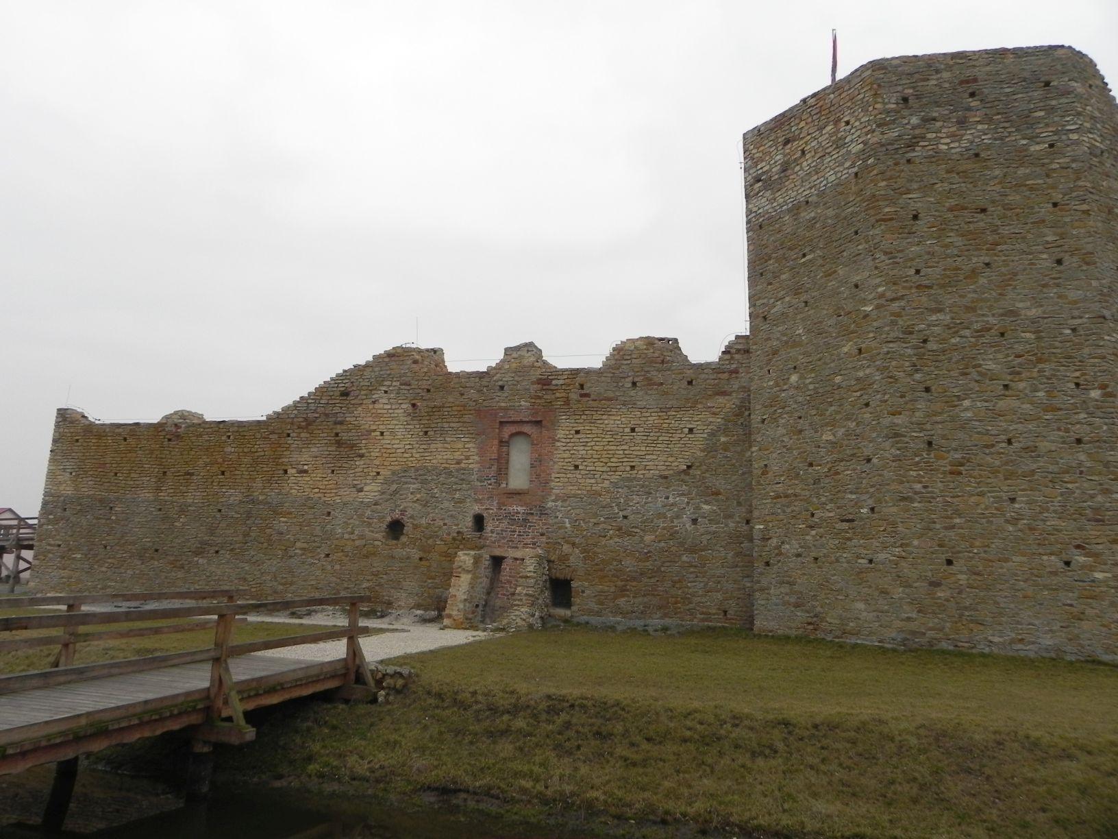 2014-01-05 Inowłódz - Ruiny zamku (3)