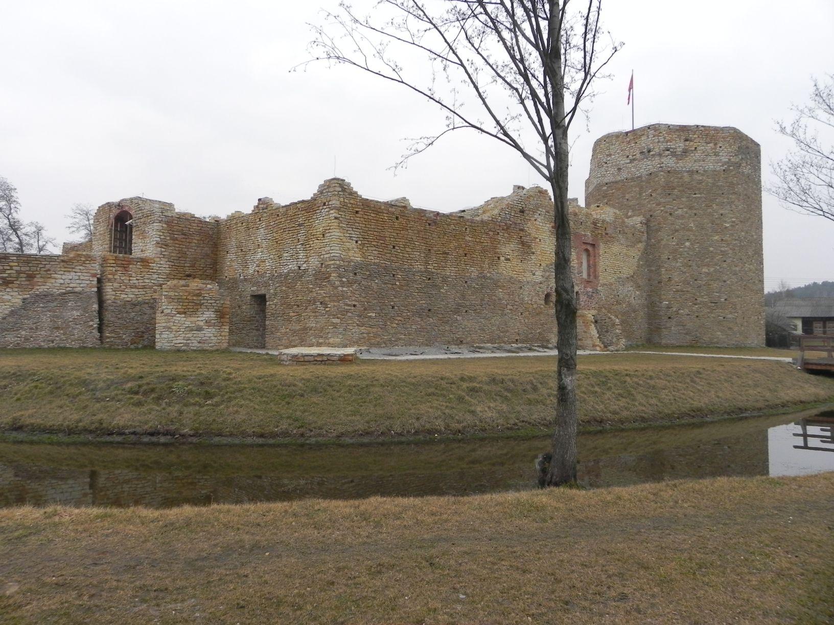 2014-01-05 Inowłódz - Ruiny zamku (4)