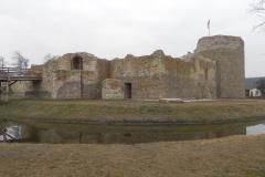 2014-01-05 Inowłódz - Ruiny zamku (5)