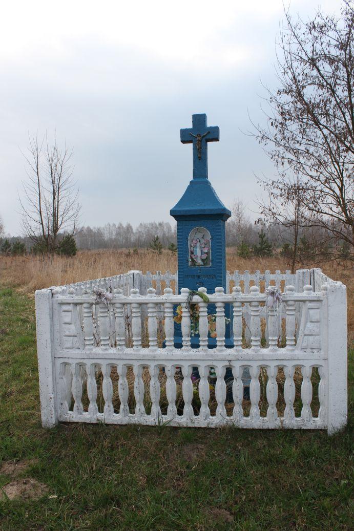 2019-04-07 Kłonna kapliczka nr1 (7)