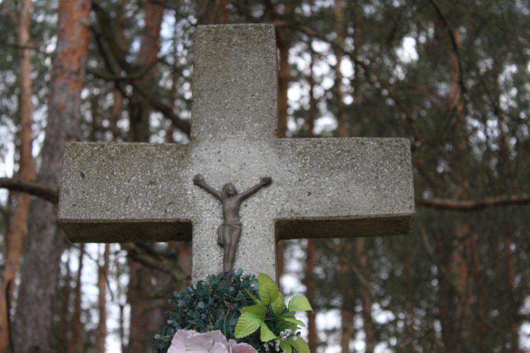 2019-04-07 Kłonna kapliczka nr2 (8)