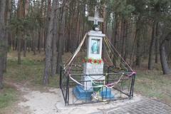 2019-04-07 Kłonna kapliczka nr2 (10)