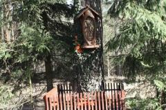 2019-03-10 Królowa Wola kapliczka nr1 (3)