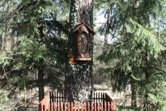 2019-03-10 Królowa Wola kapliczka nr1 (7)