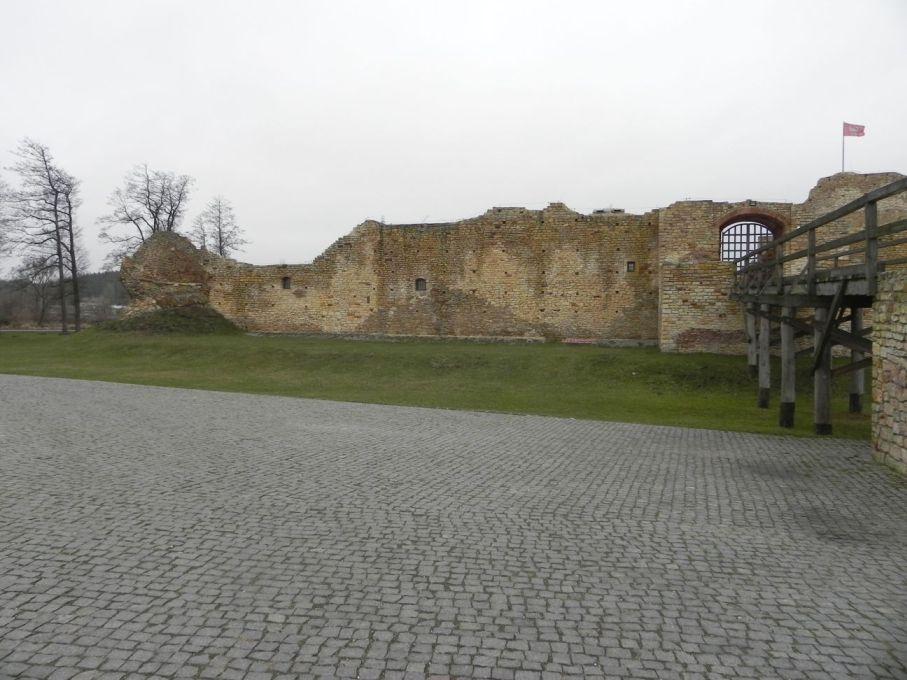2017-01-01 Inowłódz - Ruiny zamku (23)