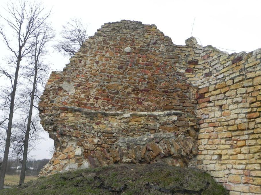 2017-01-01 Inowłódz - Ruiny zamku (25)