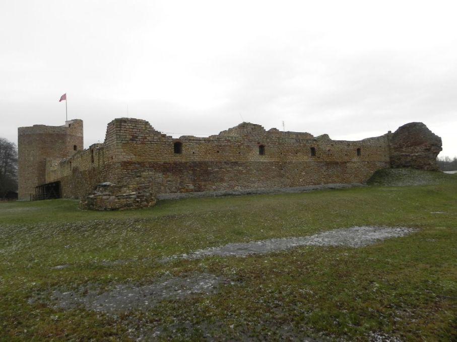 2017-01-01 Inowłódz - Ruiny zamku (31)