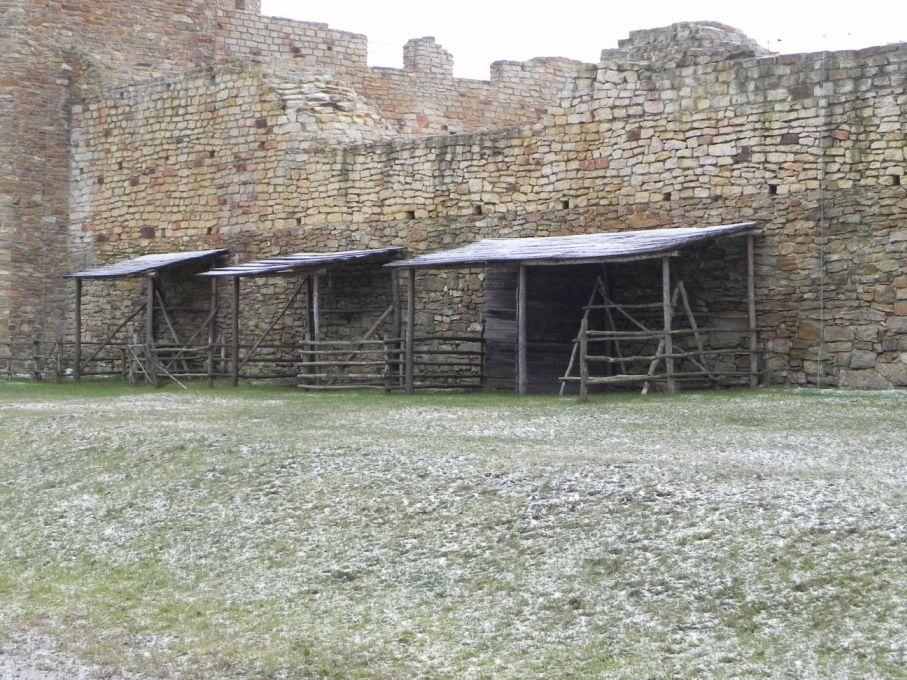 2017-01-01 Inowłódz - Ruiny zamku (33)
