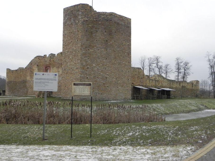 2017-01-01 Inowłódz - Ruiny zamku (4)