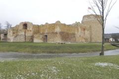 2017-01-01 Inowłódz - Ruiny zamku (14)