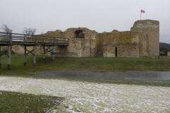 2017-01-01 Inowłódz - Ruiny zamku (15)