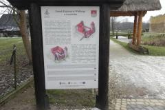 2017-01-01 Inowłódz - Ruiny zamku (2)