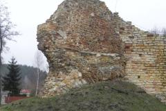 2017-01-01 Inowłódz - Ruiny zamku (24)