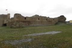 2017-01-01 Inowłódz - Ruiny zamku (30)