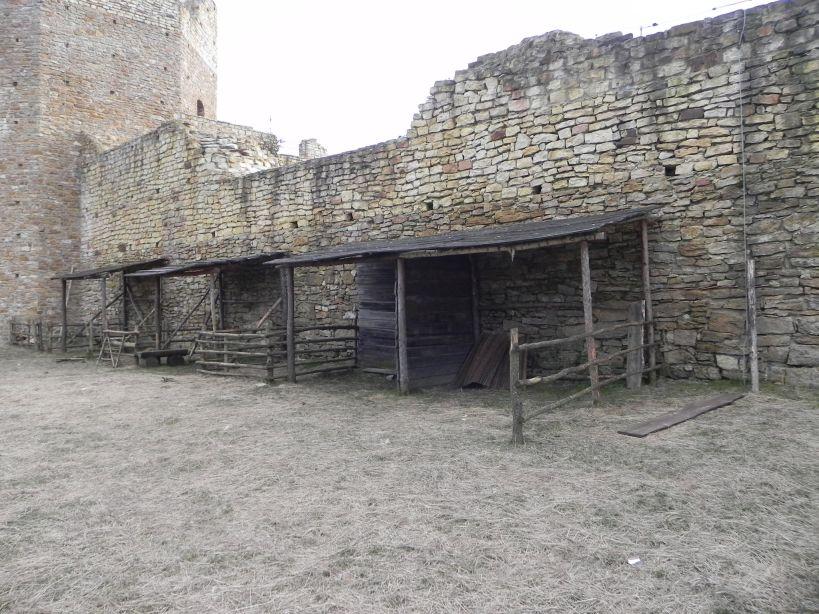 2018-01-14 Inowłódz - ruiny zamku (24)