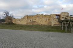 2018-01-14 Inowłódz - ruiny zamku (13)