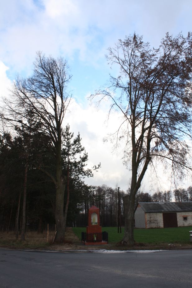 2019-01-03 Chrusty kapliczka nr1 (4)