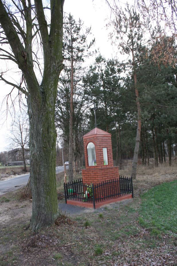 2019-01-03 Chrusty kapliczka nr1 (9)