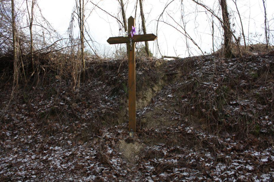 2019-01-03 Chrusty krzyż nr1 (1)