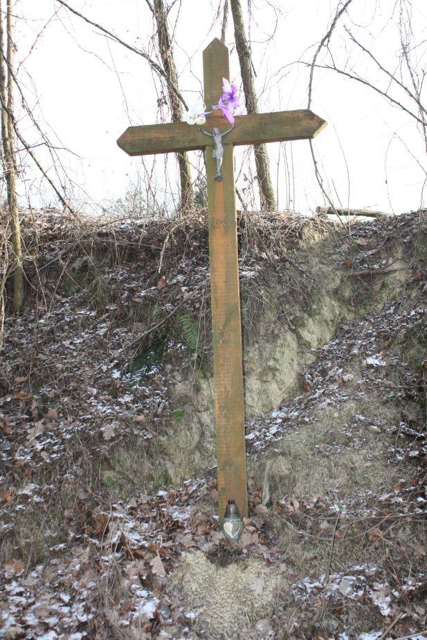2019-01-03 Chrusty krzyż nr1 (2)