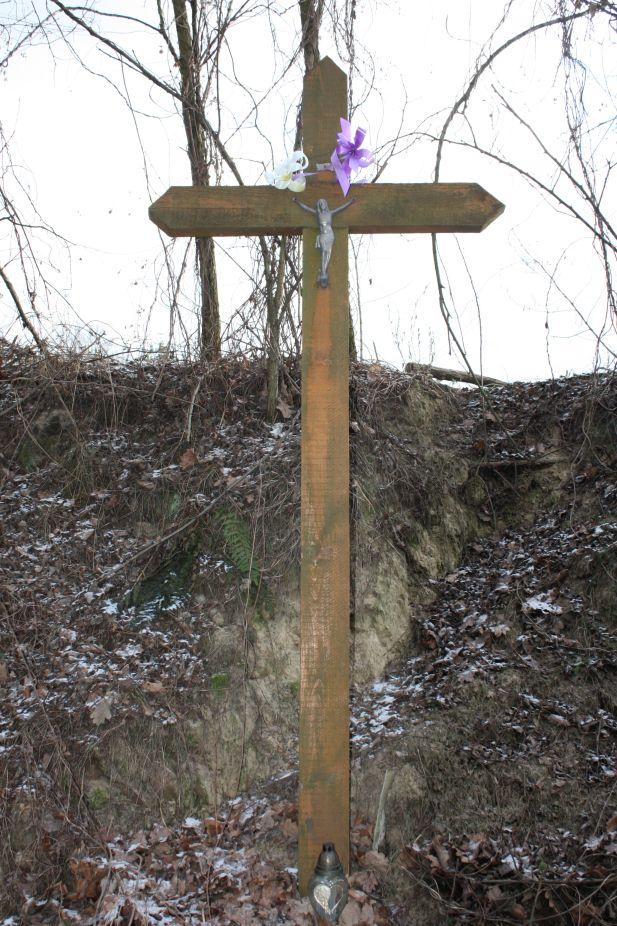 2019-01-03 Chrusty krzyż nr1 (3)