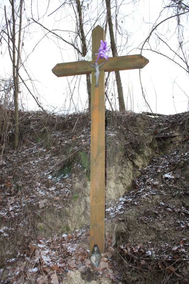 2019-01-03 Chrusty krzyż nr1 (6)