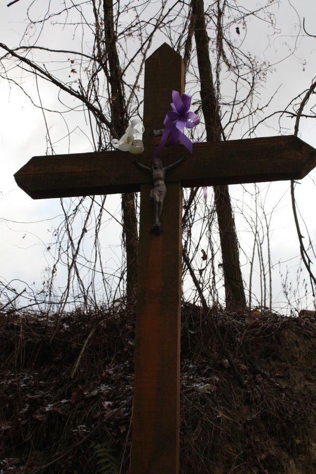 2019-01-03 Chrusty krzyż nr1 (7)