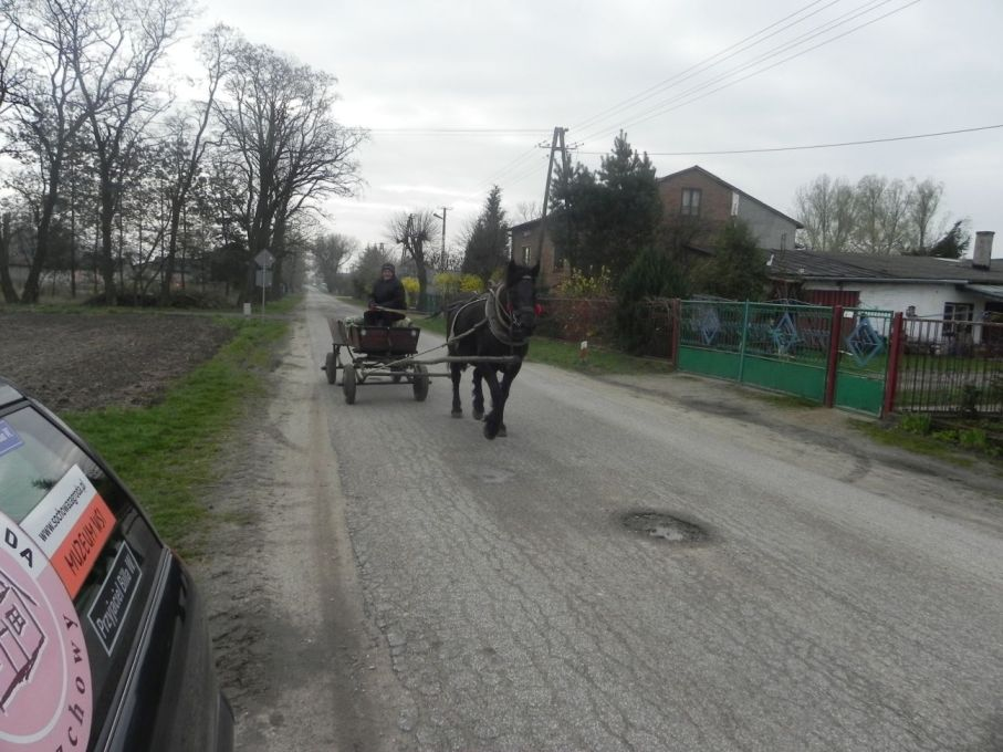 2017-04-09 Łęgonice - dworek (30)