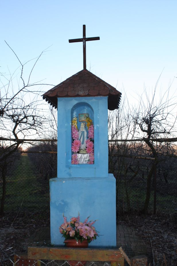 2019-02-16 Feliksów kapliczka nr1 (5)