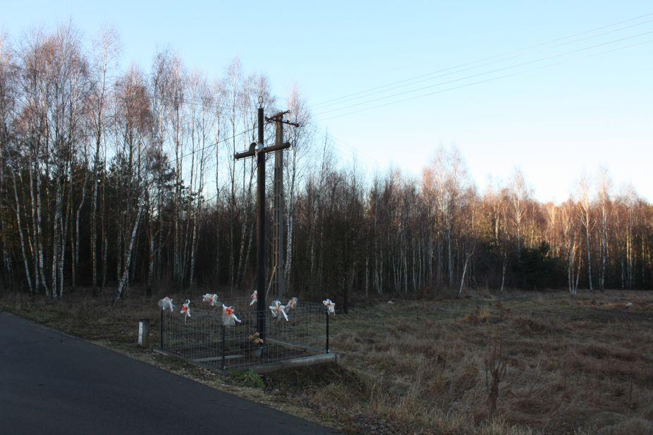 2019-02-16 Feliksów krzyż nr1 (1)