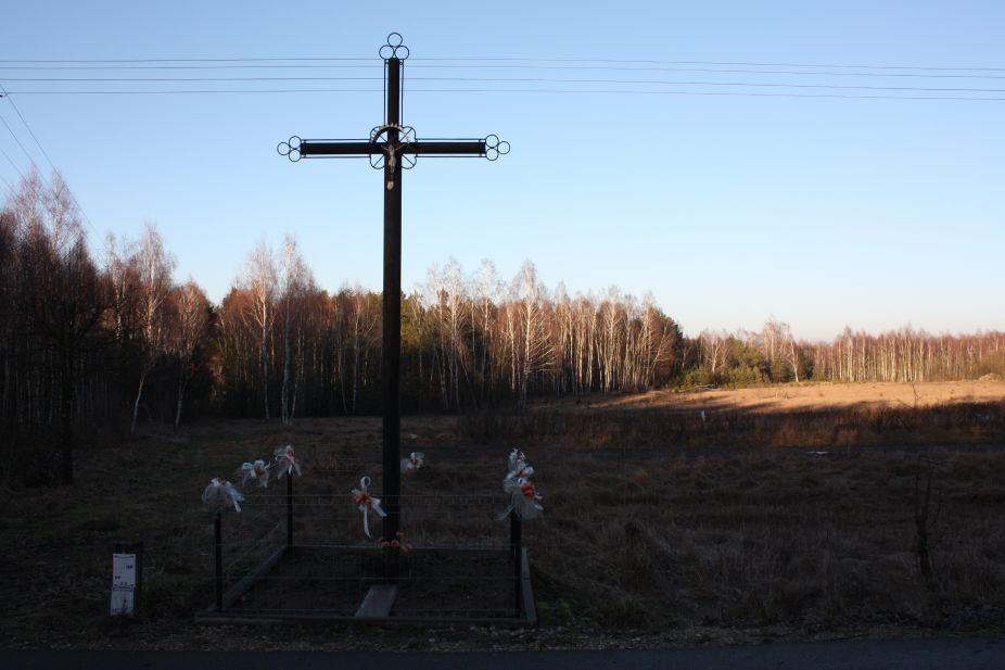 2019-02-16 Feliksów krzyż nr1 (2)
