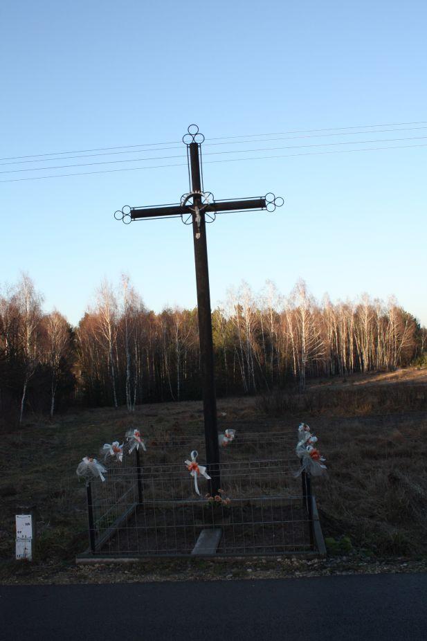 2019-02-16 Feliksów krzyż nr1 (3)