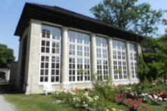 2012-06-30 Nieborów - pałac Radziwiłłów (45)