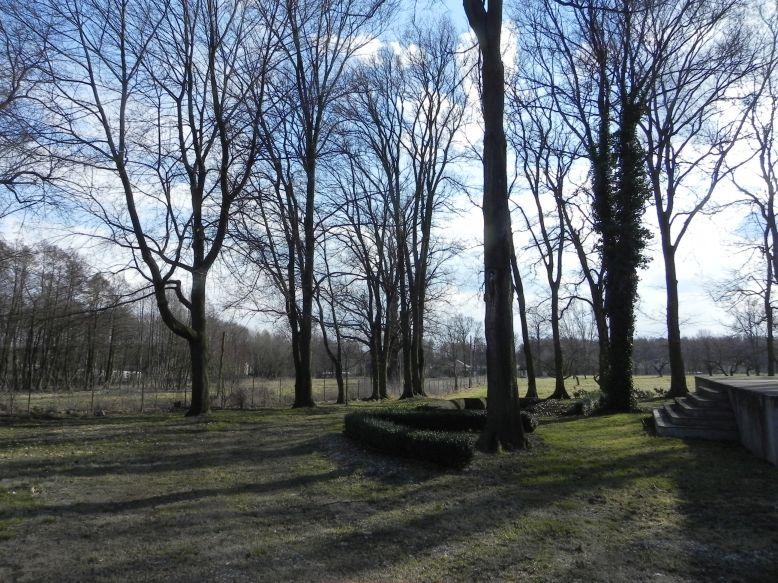 2018-04-05 Bartoszówka - pałac (17)