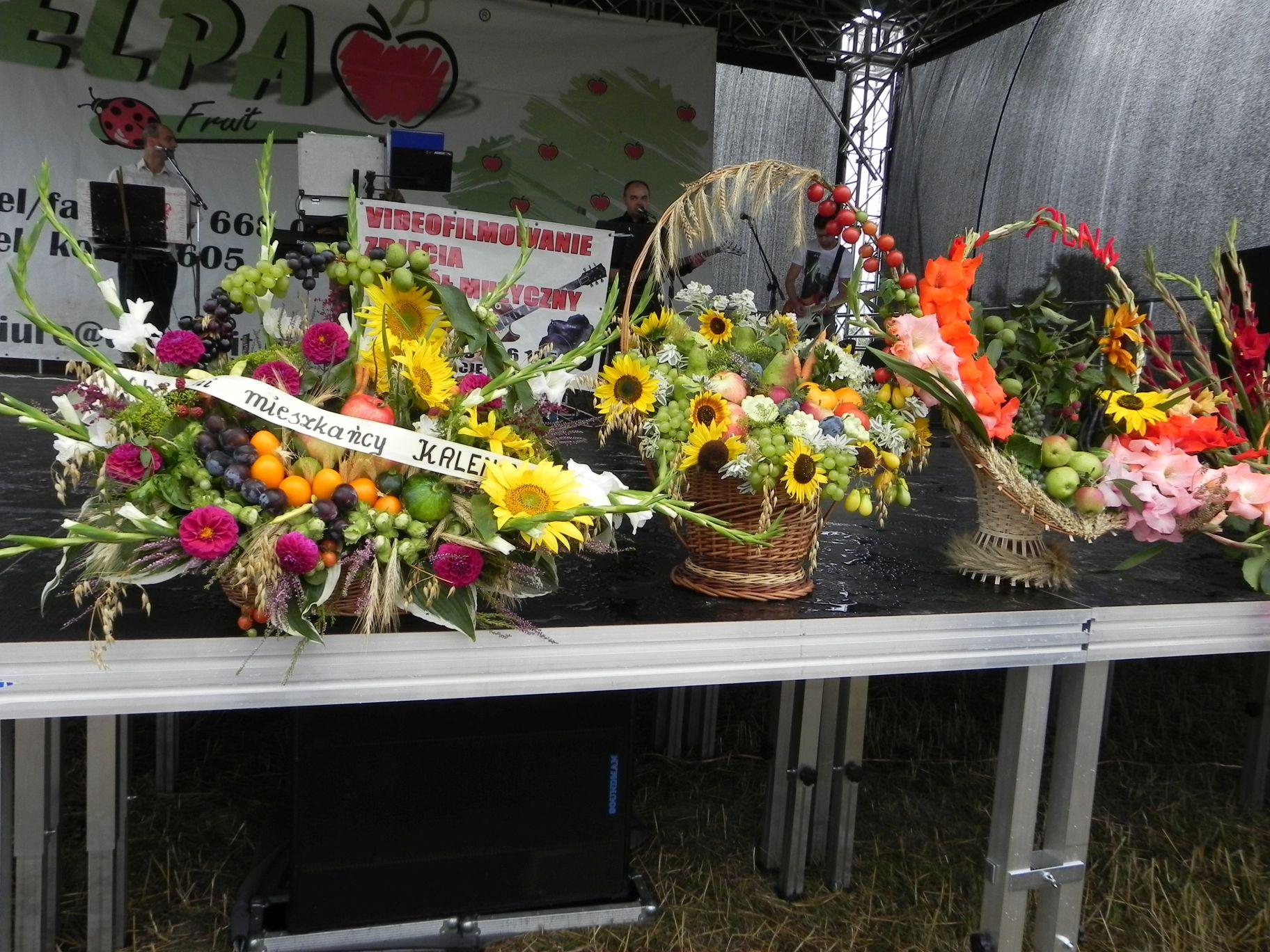 2012-08-16 Sadkowice - dożynki (38)