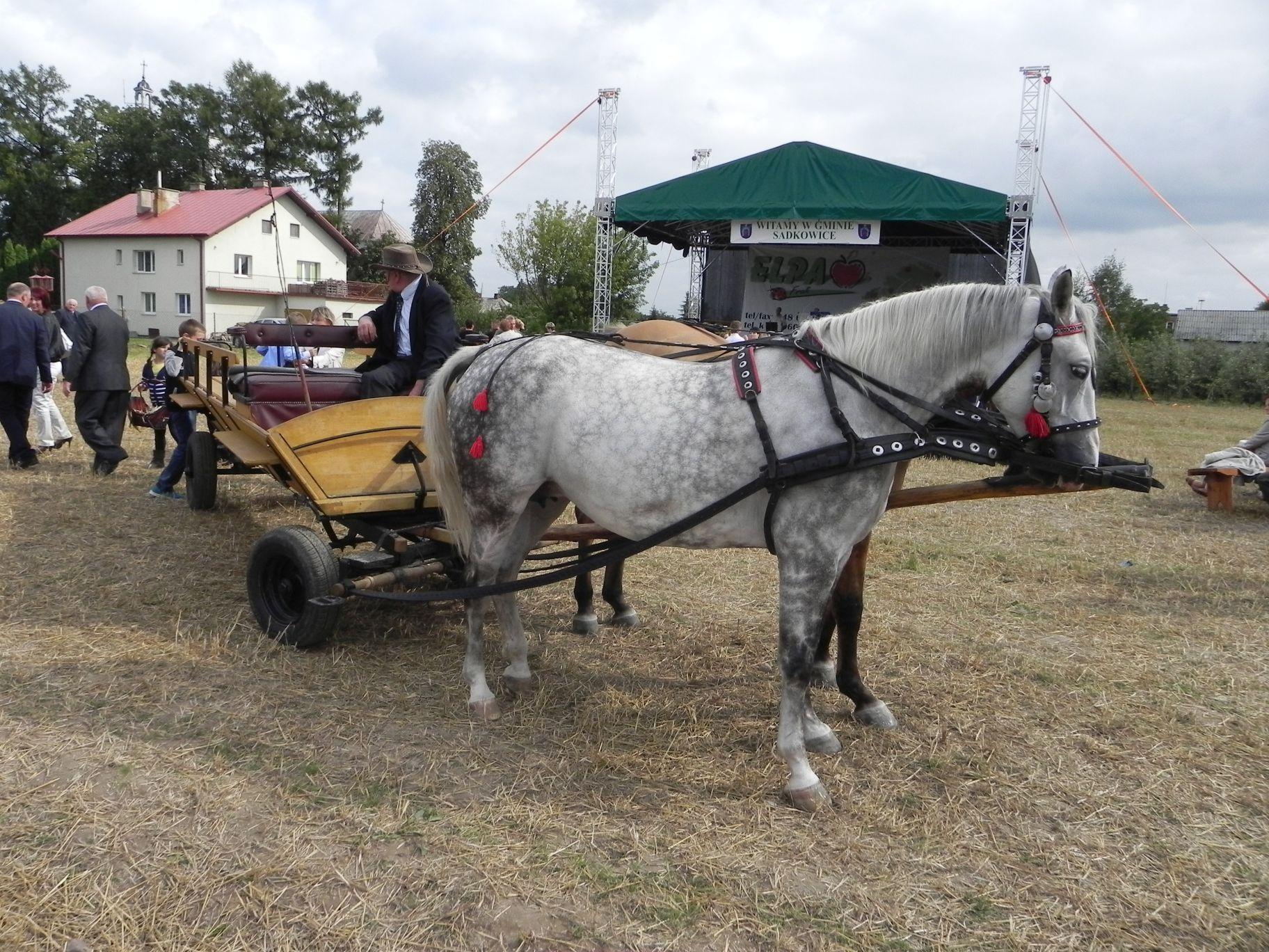 2012-08-16 Sadkowice - dożynki (72)