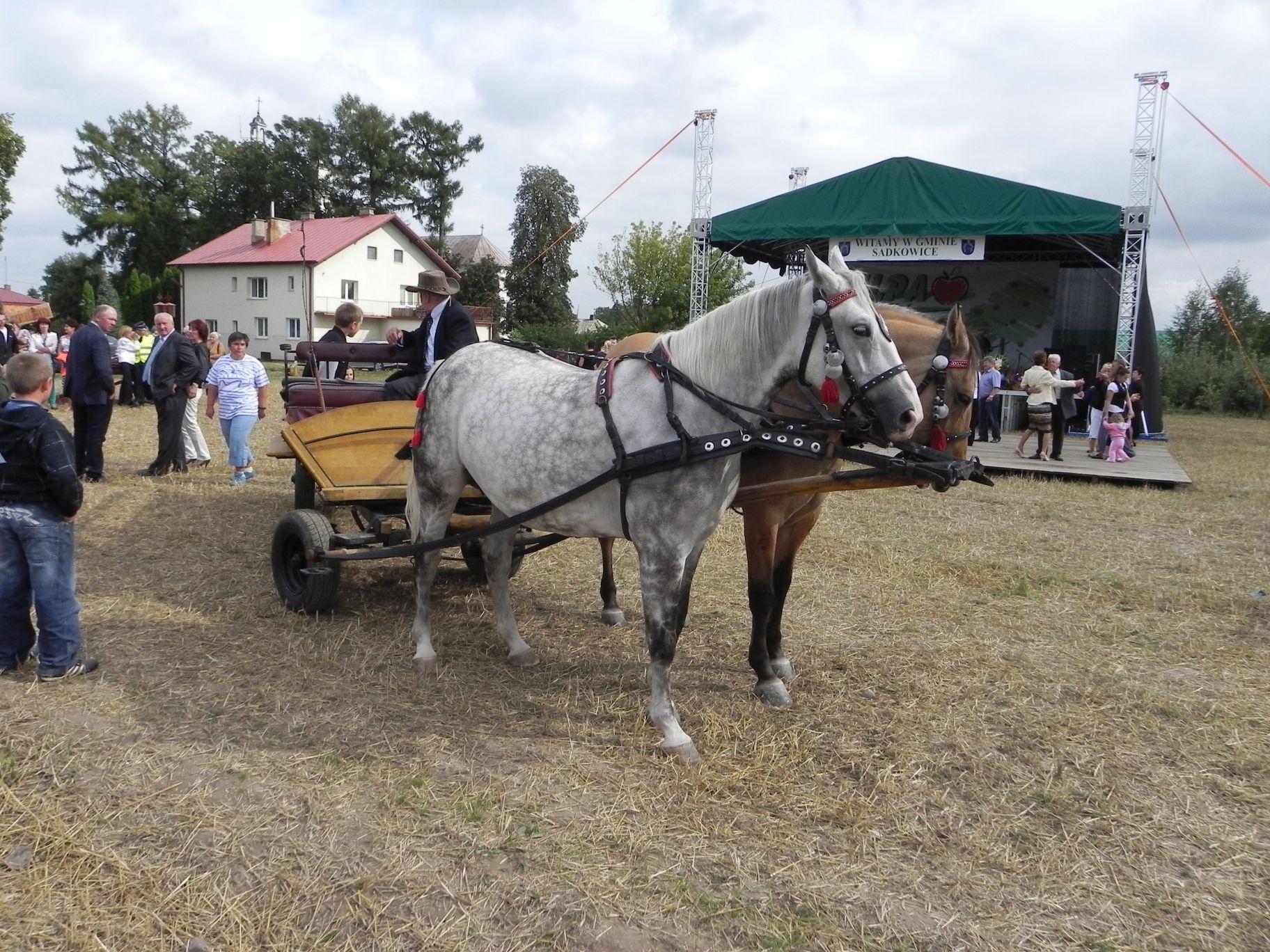 2012-08-16 Sadkowice - dożynki (73)