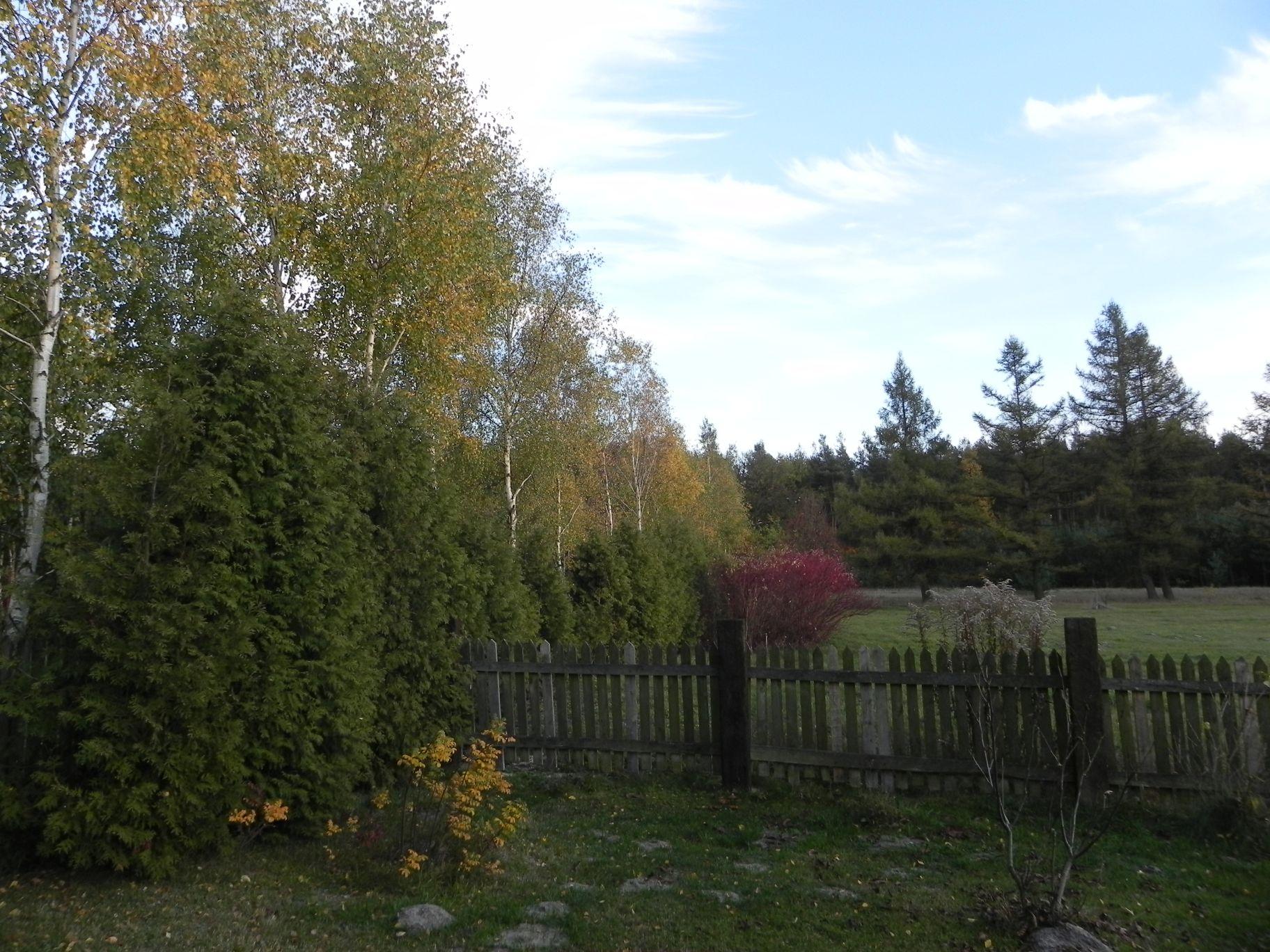 2012-10-27 Tkaczewska Góra - Synowcówka (105)