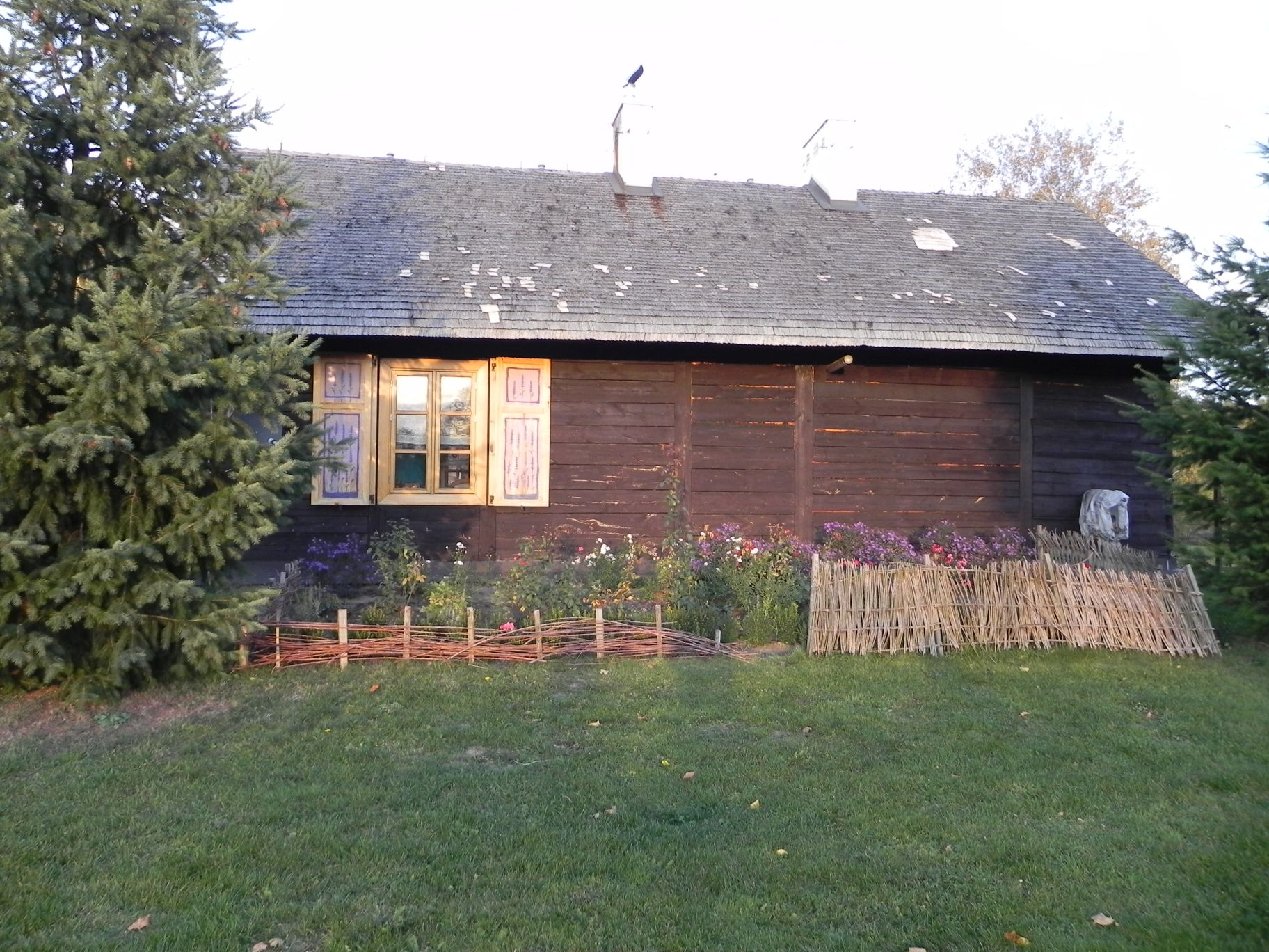 2012-10-27 Tkaczewska Góra - Synowcówka (109)