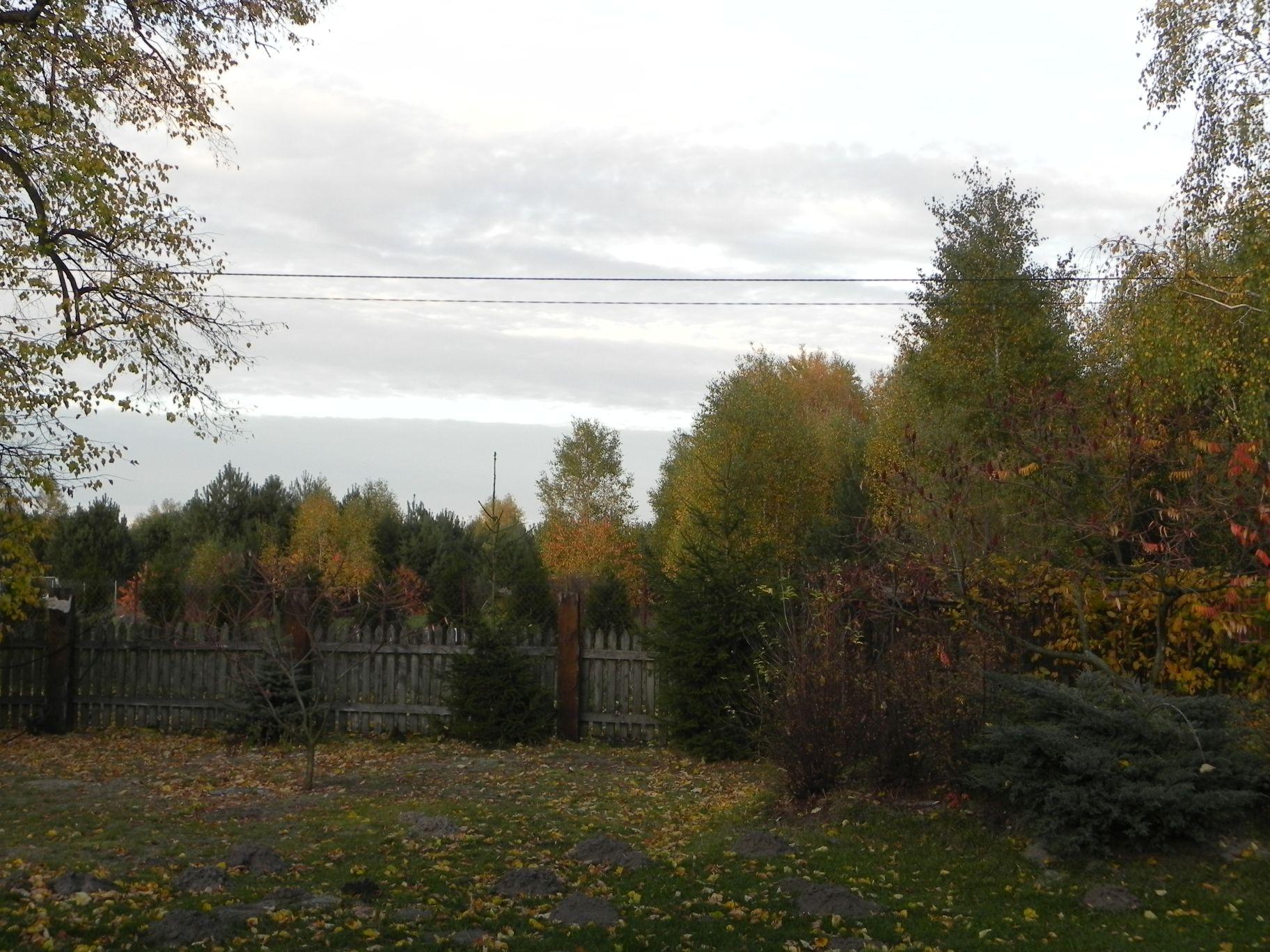 2012-10-27 Tkaczewska Góra - Synowcówka (118)