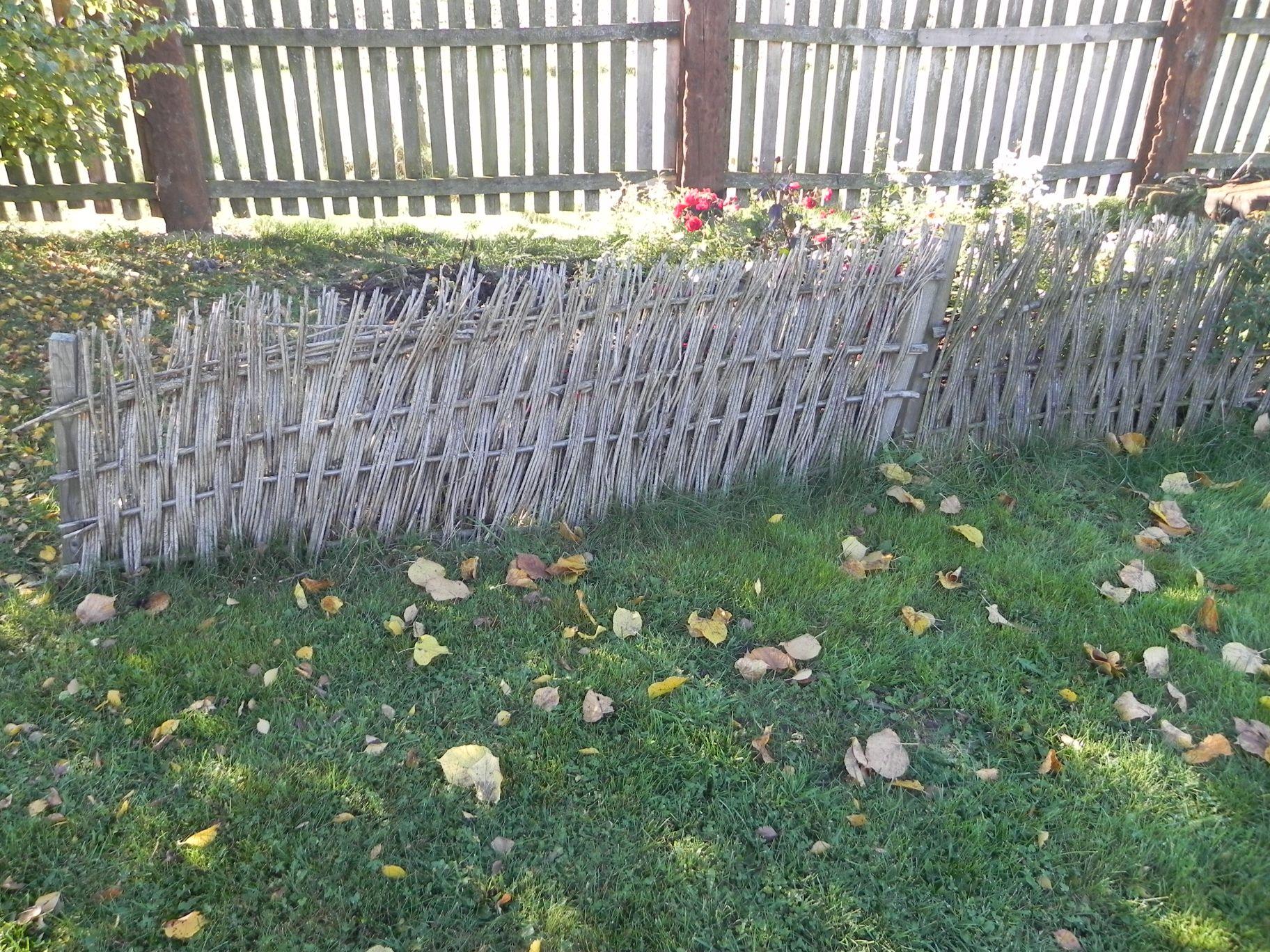 2012-10-27 Tkaczewska Góra - Synowcówka (19)