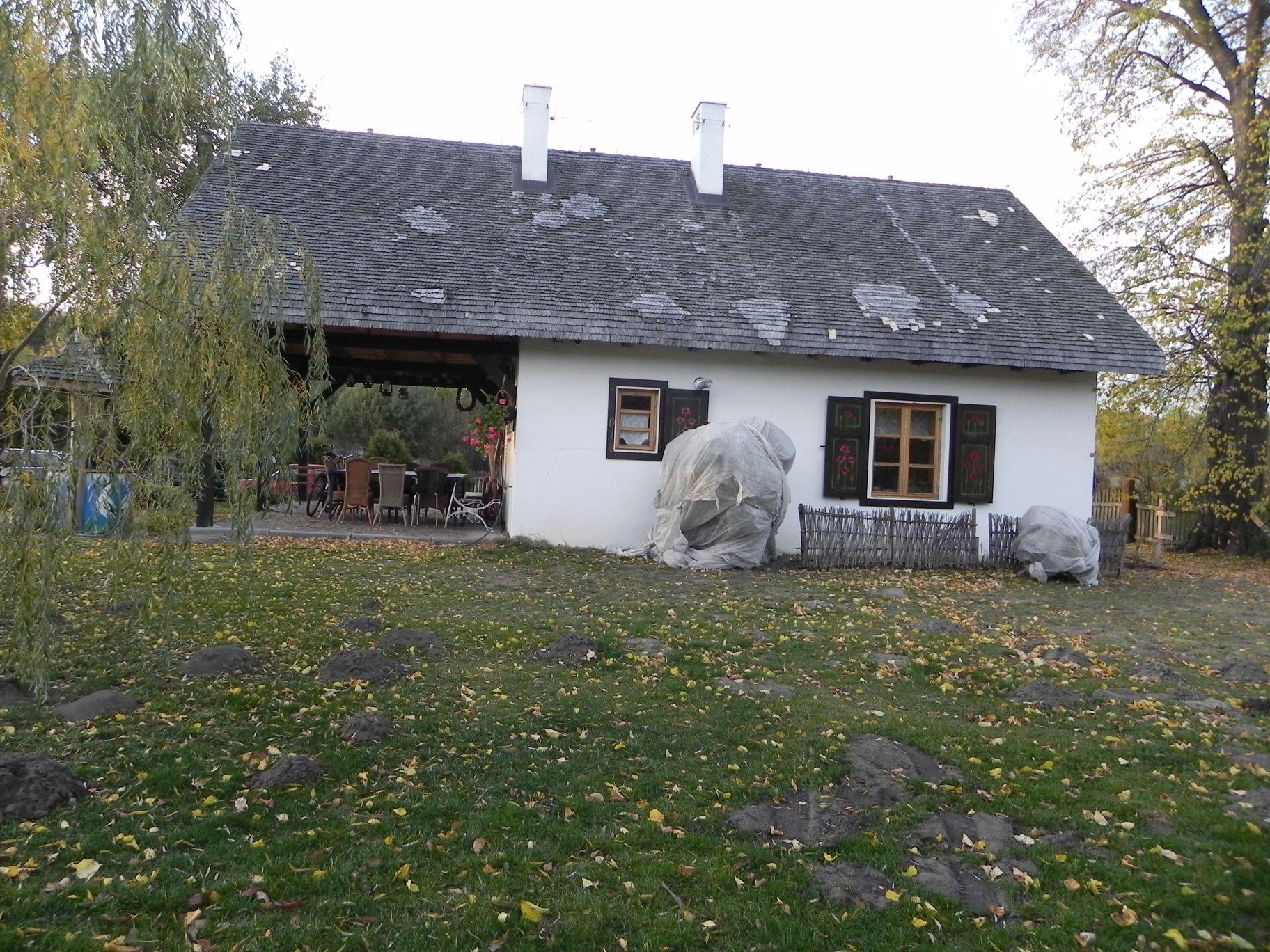 2012-10-27 Tkaczewska Góra - Synowcówka (99)