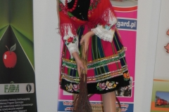 2012-12-14 Wilkowice - Konferencja Wioski tematyczne (130)