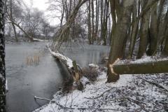Galeria zdjęć Sochowej Zagrody - podwórko i przyroda (163)